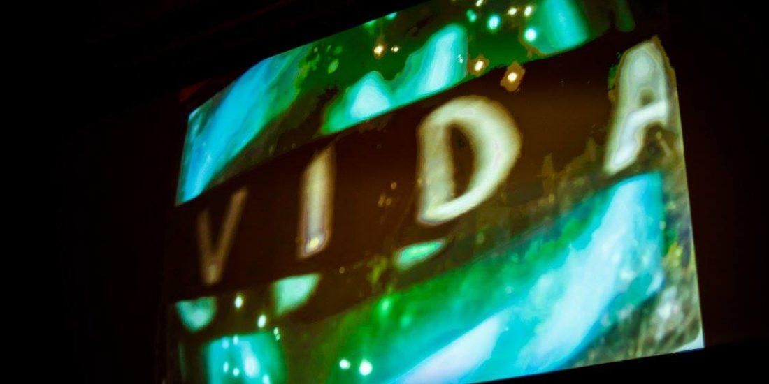 VIDA: collective videopoem